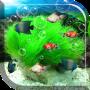 icon Aquarium Free Live Wallpaper(Aquarium Live Wallpaper)