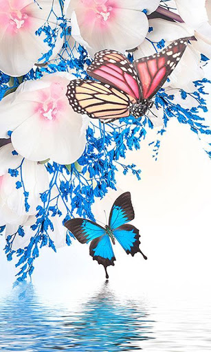 Unduh Gratis Butterfly Wallpapers Apk Untuk Android